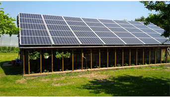 Solar Panel Greenhouse